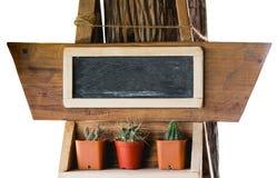 Pequeños cactus y pizarra Imagenes de archivo