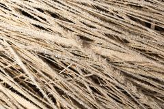 Pequeños copos de nieve en hierba seca como fondo Imagen de archivo