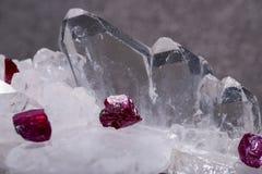 Pequeños cristales DE RUBÍES ásperos del grado de calidad superior de A de Tanzania en RACIMO del CUARZO de FADEN Aislado en negr foto de archivo