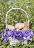 Pequeños huevos de Pascua beige en una cesta blanca con las violetas Imagenes de archivo