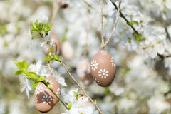 Pequeños huevos de Pascua beige que cuelgan en las ramas de un cerezo floreciente Imagen de archivo libre de regalías