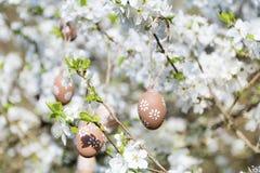 Pequeños huevos de Pascua beige que cuelgan en las ramas de un cerezo floreciente Foto de archivo