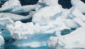 Pequeños icebergs antárticos Imagen de archivo