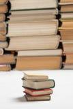 Pequeños libros con los libros grandes   Fotografía de archivo libre de regalías