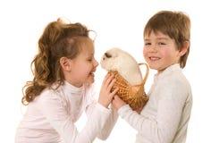 Pequeños niños con el conejillo de Indias imagen de archivo libre de regalías