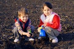 Pequeños niños en el campo que siembra la planta fotografía de archivo libre de regalías