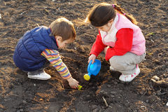 Pequeños niños en el campo que siembra la planta imagen de archivo