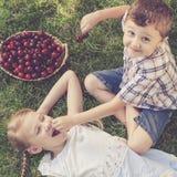 Pequeños niños felices que mienten cerca del árbol con una cesta de cherr Foto de archivo libre de regalías