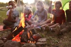 Pequeños niños que fríen las melcochas en hoguera fotos de archivo libres de regalías
