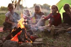 Pequeños niños que fríen las melcochas en hoguera fotografía de archivo