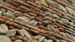 Pequeños pájaros que intentan hacer jerarquías en ruinas de la pared de piedra de la fortaleza antigua almacen de metraje de vídeo