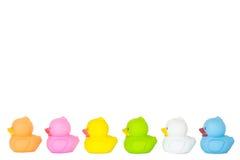 Pequeños patos Imagen de archivo libre de regalías