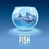 Pequeños pescados azules Foto de archivo