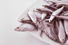 Pequeños pescados en una placa Imágenes de archivo libres de regalías