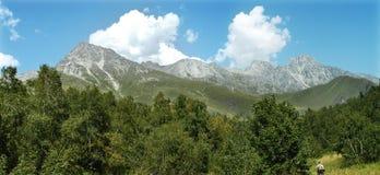 Pequeños picos Imagen de archivo