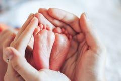 Pequeños pies del bebé recién nacido con las manos del padre Fotografía de archivo libre de regalías
