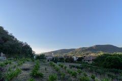Pequeños plantación y pueblo de la vid en el cielo azul de la mañana imagenes de archivo