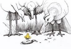 Pequeños polluelos Fotografía de archivo libre de regalías