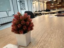 Pequeños potes en la oficina con diseños atractivos imagenes de archivo