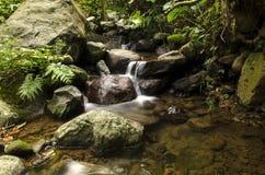 Pequeños ríos y agua clara Imagen de archivo libre de regalías