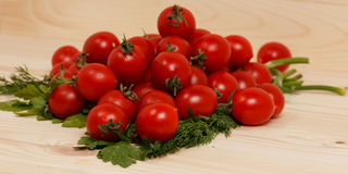 Pequeños tomates e hierbas frescas en fondo de madera Imágenes de archivo libres de regalías