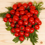 Pequeños tomates e hierbas frescas en fondo de madera Imagen de archivo libre de regalías