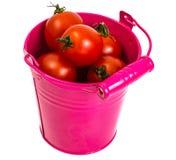 Pequeños tomates rojos Foto de archivo