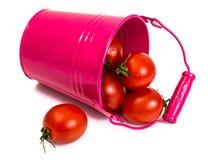 Pequeños tomates rojos Imágenes de archivo libres de regalías