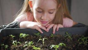 Peque?o cuidado del jardinero de la diversi?n para las plantas Muchacha linda del peque?o ni?o que planta alm?cigos Concepto, nat almacen de metraje de vídeo