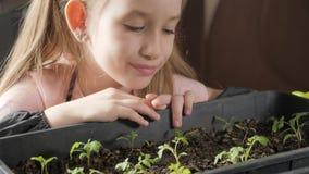 Peque?o cuidado del jardinero de la diversi?n para las plantas Muchacha linda del peque?o ni?o que planta alm?cigos Concepto, nat almacen de video