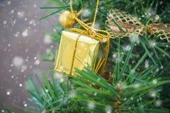 Pequeña caja de regalo del oro en el árbol de navidad con caer de la nieve Imagen de archivo