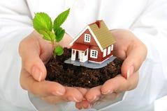 Pequeña casa y planta en manos. Imagen de archivo libre de regalías