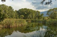 Pequeña presa en el parque del sur hermoso Fotos de archivo libres de regalías