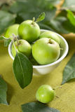 Pequeñas manzanas en el tazón de fuente Foto de archivo