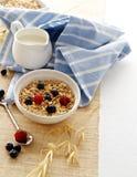 Pequeno almoço com aveia e bagas Fotos de Stock Royalty Free