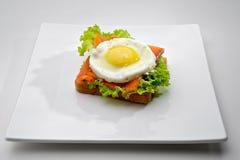 Pequeno almoço dos peixes Imagens de Stock