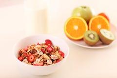 Pequeno almoço saudável e nutritious imagem de stock