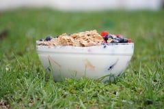 Pequeno almoço saudável fresco Foto de Stock Royalty Free