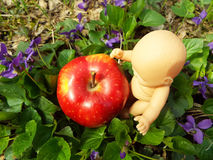 Pequeno e Apple Foto de Stock Royalty Free