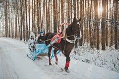 Pequeno trenó de Santa Claus com crianças Imagens de Stock Royalty Free