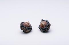 Pequenos tailandeses do amuleto protegem o mal Imagens de Stock Royalty Free