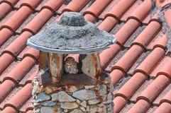 Pequeño búho en una chimenea de piedra Imagen de archivo libre de regalías