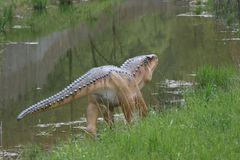 pequeño dinosaurio Foto de archivo