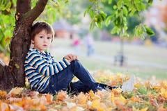 Pequeño niño pequeño, comiendo la manzana por la tarde Imagen de archivo libre de regalías