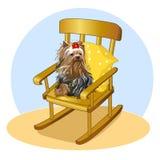 Pequeño perro con el arco que se sienta en mecedora Yorkshire Terrier en una almohada Mi animal doméstico preferido Ilustración d Fotografía de archivo libre de regalías