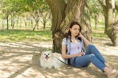 Pequeño perro y su dueño que descansan en la sombra Foto de archivo