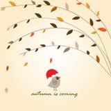 Pequeño pájaro lindo con el paraguas bajo árbol del otoño Fotos de archivo libres de regalías