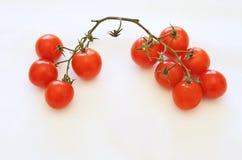 Pequeños tomates en el fondo blanco Fotografía de archivo libre de regalías
