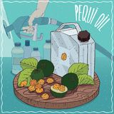 Pequi oil used for fuel production. Metal Jerrycan of Pequi oil and fruits and seeds of Caryocar brasiliense plant. Filling at gas petrol station. Natural vector illustration