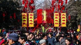 Pequim, China 2 de fevereiro de 2014: Povos que guardam brinquedos no parque de Ditan durante o festival de mola chinês no Pequim video estoque